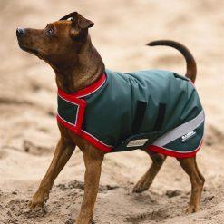 RAMBO WATERPROOF DOG RUGS OLD STYLE - Image