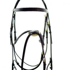 ASCOT GRACKLE BRIDLE - Image
