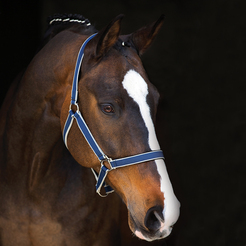 Horseware Amigo Head Collar - Image