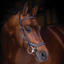 RAMBO MICKLEM DELUXE COMPETITION BRIDLE - Image