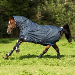 Horseware Amigo Bravo 12 Plus Lightweight Turnout - Image