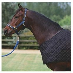EDT QUILTED RUG BIB - Image