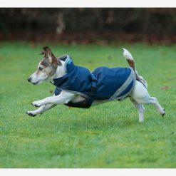 Bucas Freedom Dog Rug - Image