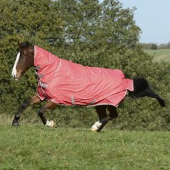 Bucas Freedom Turnout Combo Rug 150g - Image