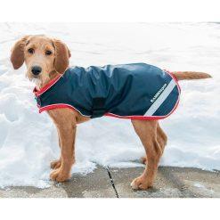 RAMBO WATERPROOF DOG RUG - Image