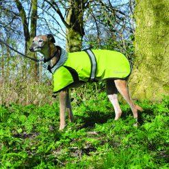 MASTA FLASH DOG COAT - Image