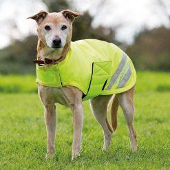 6895 SHIRES EQUI-FLECTOR DOG COAT - Image